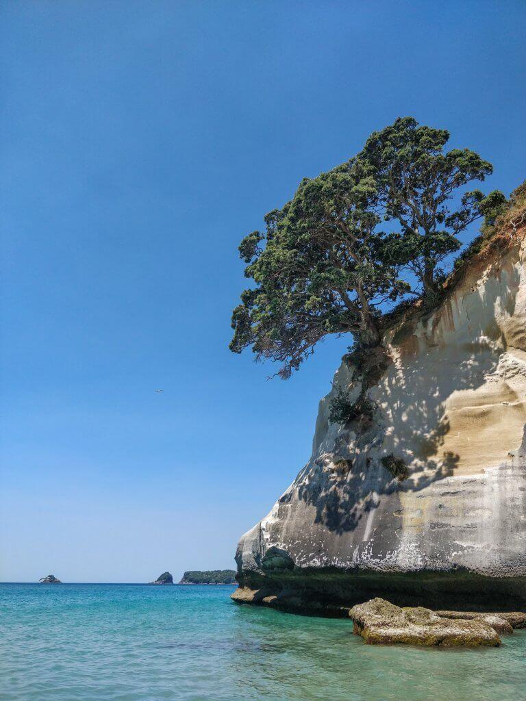 Pointe de la Cathedral Cove