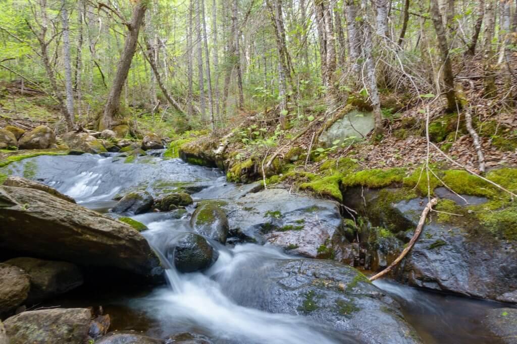 Le ruisseau Belleau